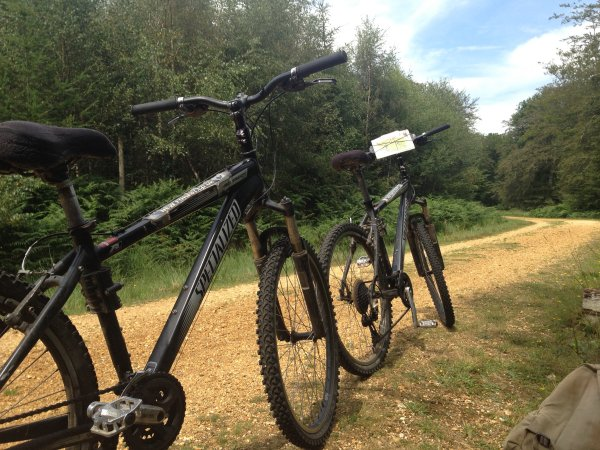 New Forest Bikes